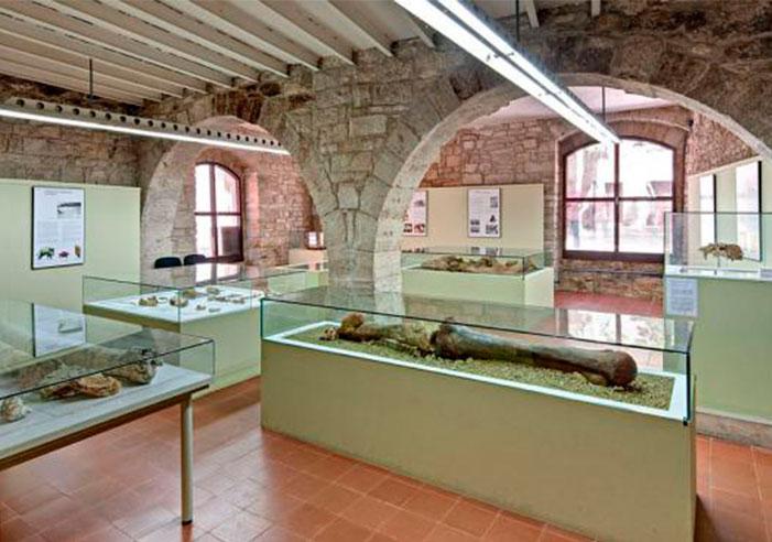 museu-arquologic